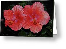 Nature Untouched Greeting Card