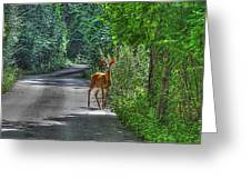 Natures Best Greeting Card