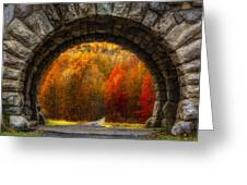 Natures Color Schemes Greeting Card