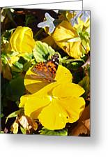 Nature's Disquise I Greeting Card