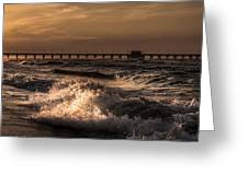 Natures Drama 4 Greeting Card by Kim Loftis