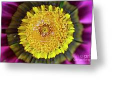 Natures Eye Greeting Card