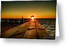 Nature's Lantern Greeting Card