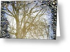 Natures Looking Glass 4 Greeting Card