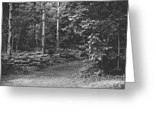 Natures Path Greeting Card
