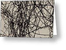 Nature's Pen And Ink 2 Greeting Card by Susie DeZarn