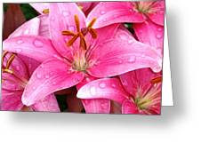 Natures Tears Greeting Card