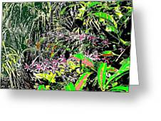 Nature's Way Greeting Card by Eikoni Images
