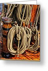 Nautical Knots 16 Greeting Card by Mark Myhaver