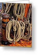 Nautical Knots 17 Oil Greeting Card
