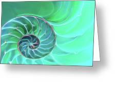 Nautilus Aqua Spiral Greeting Card