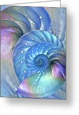 Nautilus Shells Blue And Purple Greeting Card