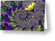 Nautilus Swirls Greeting Card