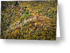Nc Fall Foliage 0543 Greeting Card