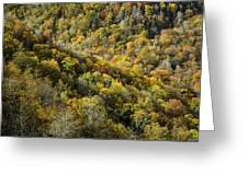 Nc Fall Foliage 0545 Greeting Card