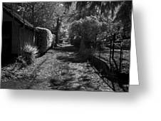 Ne Portland Alley Greeting Card