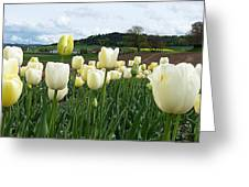 Near From You Greeting Card
