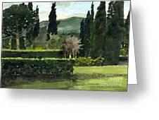 Near Villa Mandri Gardens Greeting Card