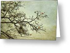 Nearly Bare Branches Greeting Card