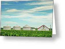 Nebraska Corn Greeting Card