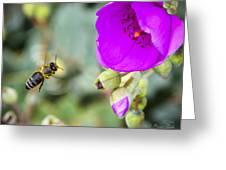 Nectar Run Greeting Card