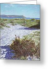 Needles From Hengistbury Head Greeting Card