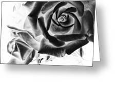 Negative Roses Greeting Card