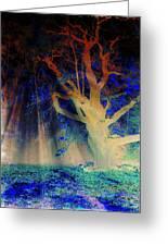 Negative Tree And Sunbeams Greeting Card