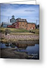 Neligh Mill Greeting Card