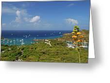Nelson's Dockyard Antigua Greeting Card
