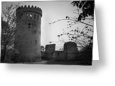 Nenagh Castle County Tipperary Ireland Greeting Card
