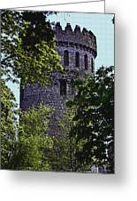 Nenagh Castle Ireland Greeting Card