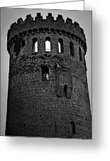 Nenagh Castle Tower Bw Greeting Card