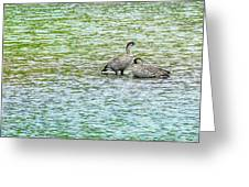 Nene Water Wings Greeting Card