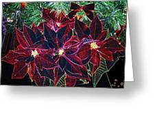 Neon Poinsettias Greeting Card