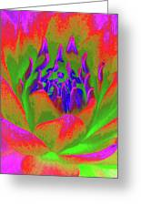 Neon Water Lily 02 - Photopower 3371 Greeting Card