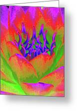 Neon Water Lily - Photopower 3370 Greeting Card