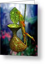 Nepenthes Pixi 1 Greeting Card