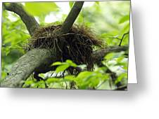 Nesting Place Greeting Card