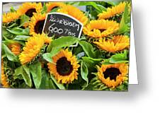 Netherlands Sunflowers Greeting Card