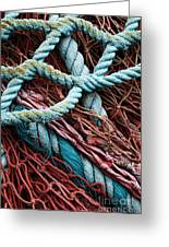 Nets And Knots Number Six Greeting Card