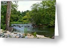 Neuse Falls Trail Greeting Card