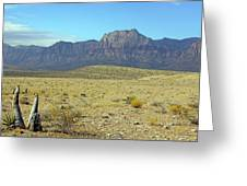 Nevada 2 Greeting Card