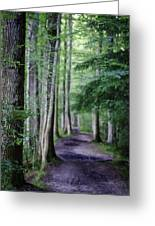 Never Ending Trail Greeting Card