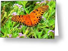Windows From Heaven Orange Butterfly Greeting Card