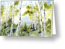 New England Birches Greeting Card