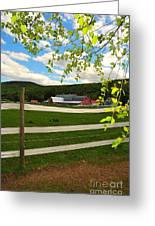 New England Farm Greeting Card by Catherine Reusch Daley