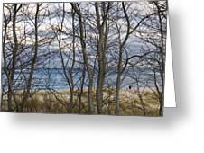 New England Massachusetts Beach  Scene Greeting Card