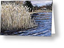 New England Pond Greeting Card