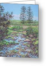 New Forest Ditch Greeting Card